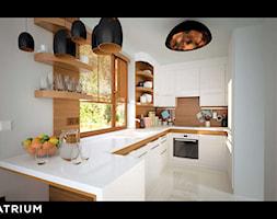 Double+House+III+-+Kuchnia+-+Wizualizacja+-+zdj%C4%99cie+od+Studio+Atrium