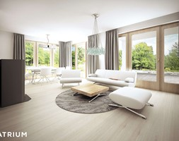 Samba+III+-+Pok%C3%B3j+dzienny+-+Wizualizacja+-+zdj%C4%99cie+od+Studio+Atrium