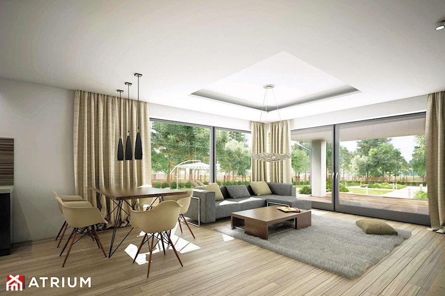 Merlin - Pokój dzienny - Wizualizacja - zdjęcie od Studio Atrium