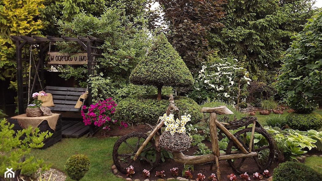 Pomysłowy Ogród Wieloletni Jakie Rośliny Wybrać Homebook
