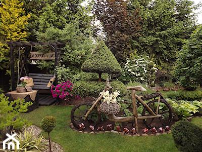 Pomysłowy ogród wieloletni – jakie rośliny wybrać?