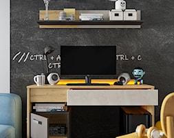Kolekcja+QUBIC+-+biurko+z+dwiema+szufladami+i+szafk%C4%85+-+zdj%C4%99cie+od+Lenart