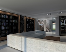 Salon+-+zdj%C4%99cie+od+jan+van+tarss+Architecture