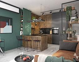 Stary Spichlerz - Mała otwarta czarna zielona kuchnia w kształcie litery u w aneksie, styl eklektyczny - zdjęcie od N'concept