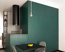 Kawalerka w zabytkowej kamienicy - Mała otwarta biała zielona jadalnia w kuchni, styl eklektyczny - zdjęcie od DEMBOWSKA / JAGIEŁŁO studio architektury - Homebook