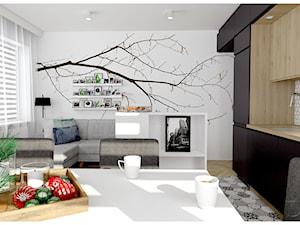 Salon z kuchnią dla czteroosobowej rodziny - niecałe 19m2
