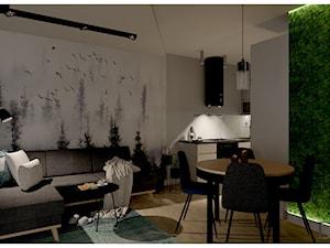 Salon z kuchnią około 27m2 w mieszkaniu dwupoziomowym.
