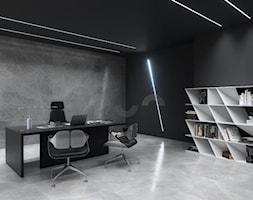 Nowoczesne%2C+industrialne+biuro+z+o%C5%9Bwietleniem+LED+na+%C5%9Bcianie+i+suficie+-+zdj%C4%99cie+od+Lumines+Lighting