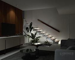Nowoczesne+o%C5%9Bwietlenie+schod%C3%B3w+w+salonie+-+zdj%C4%99cie+od+Lumines+Lighting