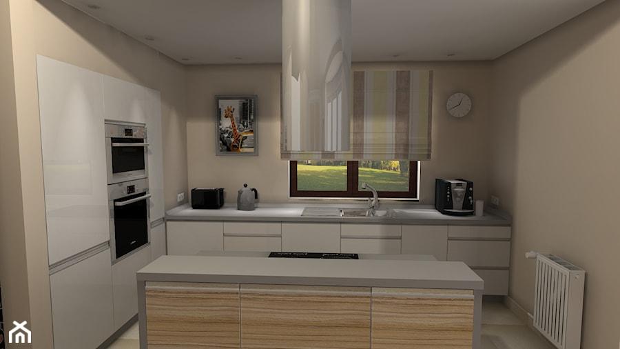 Wizualizacje 3d Projekt Wnętrza Mieszkalnego Basiaprojekt