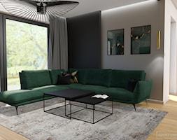 Wnętrza domu pod Krakowem - Salon, styl nowoczesny - zdjęcie od Studio Projektowe Zgodnie Z Planem - Homebook