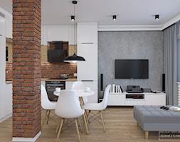 Mieszkanie z czerwoną cegłą - Salon, styl nowoczesny - zdjęcie od Studio Projektowe Zgodnie Z Planem - Homebook