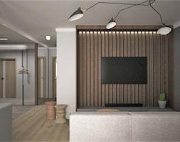 Salon+-+zdj%C4%99cie+od+Minima+Studio
