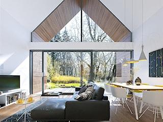 Projekt domu Z pomysłem 3 WAW1104