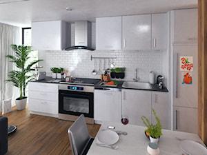 Kuchnia z marką Berdsen - Mała otwarta biała kuchnia jednorzędowa w aneksie z oknem, styl nowoczesny - zdjęcie od janshop