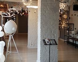 Salon+o%C5%9Bwietleniowy+-+zdj%C4%99cie+od+LUX-LAMPY