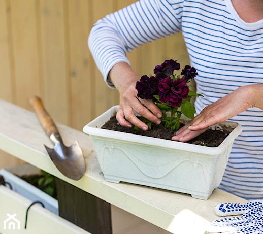 Narzędzia ogrodnicze na każdą kieszeń – przegląd