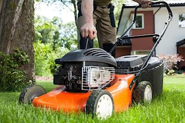 Jaka kosiarka spalinowa do 700, 1000 i 2000 zł sprawdzi się w Twoim ogrodzie?