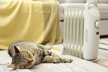 Jaki grzejnik elektryczny wybrać na jesień i zimę 2020/2021? Doradzamy