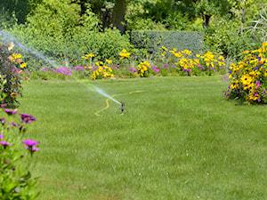Podlewanie ogrodu – 8  sposobów na oszczędne podlewanie ogrodu
