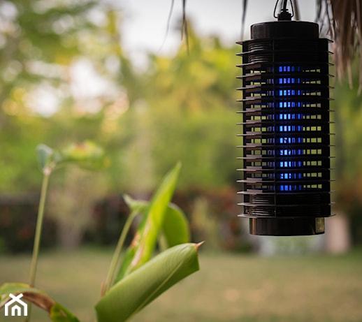 Lampa owadobójcza – odpowiadamy na 8 najczęstszych pytań o lampy na owady