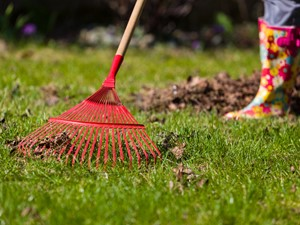 Marzec w ogrodzie – jakie prace ogrodowe należy wykonać w marcu?