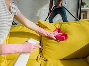 Czyszczenie kanapy – jak wyczyścić kanapę domowym sposobem?