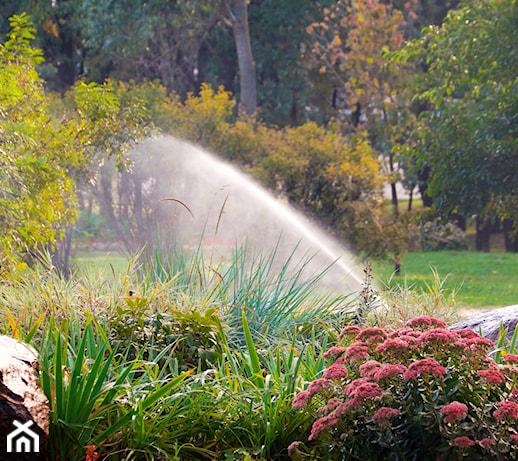 Nawadnianie ogrodu – jak zaplanować system podlewania ogrodu?