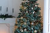 drzewko bożonarodzeniowe 2019