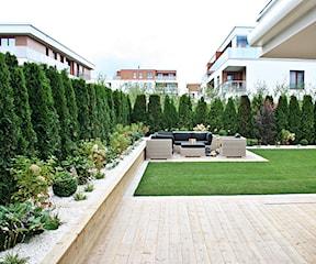 Jaką trawę wybrać – sprawdzone mieszanki traw do zasiania w ogrodzie