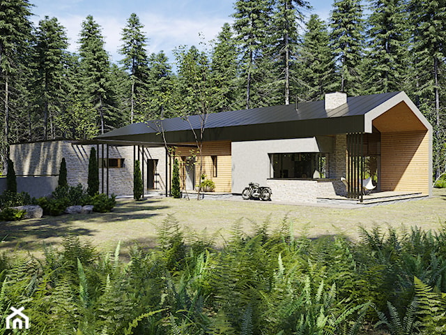 dom parterowy z dachem dwuspadowym i garażem dwustanowiskowym