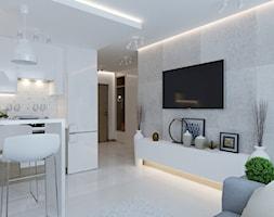 Salon+-+zdj%C4%99cie+od+tz_interior