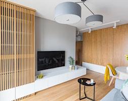 Mieszkanie+dla+pilota+-+zdj%C4%99cie+od+Gama+Design
