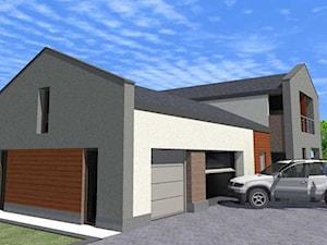 Dom Mieszkalny Jednorodzinny BUZ - Koncepcja architektoniczna