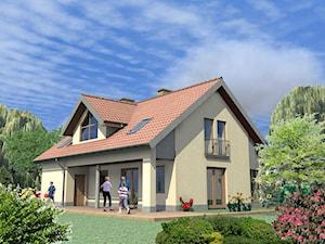Dom Mały Pietrowy IDL