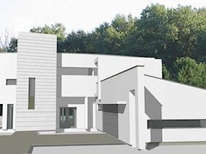 Dom Mieszkalny Jednorodzinny Koncepcja
