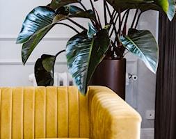 Roślinność i ozdoby w salonie apartamentu z atresolą. - zdjęcie od Maciej Nowakowski Fotografia Wnętrz - Homebook
