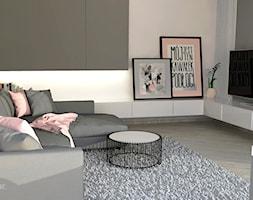 Salon z różowym akcentem - zdjęcie od EM Projektowanie Wnętrz