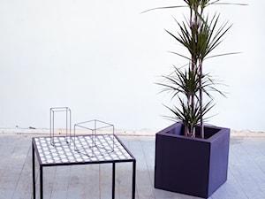 KwiatyPaproci - Artysta, designer
