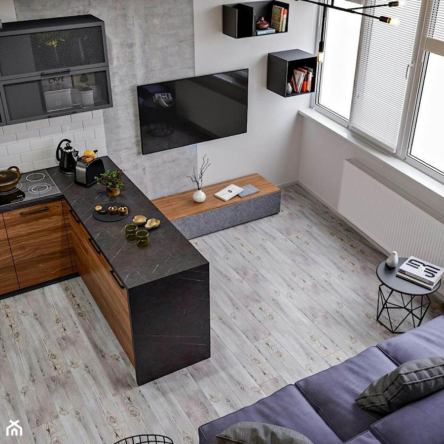 Ukraina / Kijów- 2-pokojowe mieszkanie w stylu industrialnym - Salon, styl industrialny - zdjęcie od ABD Projects