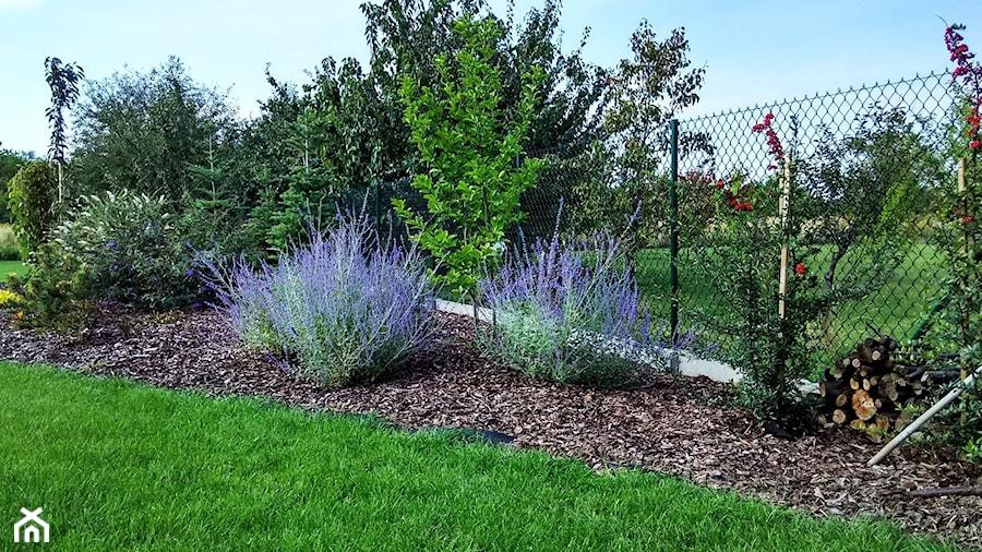 Ogród w stylu klasycznym - Ogród, styl minimalistyczny - zdjęcie od Czas na zielen