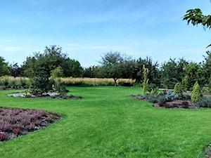 Ogród w stylu klasycznym - Duży ogród za domem - zdjęcie od Czas na zielen