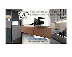 Domy+-+zdj%C4%99cie+od+CAD+meble