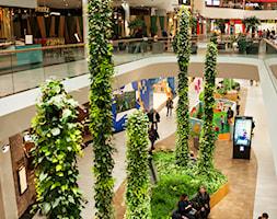 PLANTSTALAGMITES+by+GREEN+FORTUNE+-+zdj%C4%99cie+od+N+I+K+I