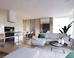 Salon+z+kuchni%C4%85+-+zdj%C4%99cie+od+Golaska+Studio