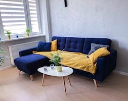 Metamorfoza mieszkania na Warszawskiej Pradze - Mały szary biały salon, styl skandynawski - zdjęcie od Ola Dąbrowska 13
