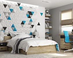 Panele+Gipsowe+3d+-+Model+Triangels+w+barwieniu+dekoracyjnym+-+mix+kolor%C3%B3w+-+zdj%C4%99cie+od+Panels3d