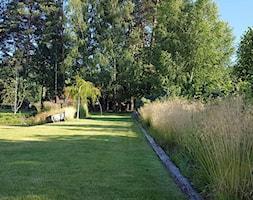 Trawy+ozdobne+-+zdj%C4%99cie+od+Mazurskie+Ogrody