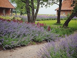 Ogród w lipcu - zdjęcie od Mazurskie Ogrody