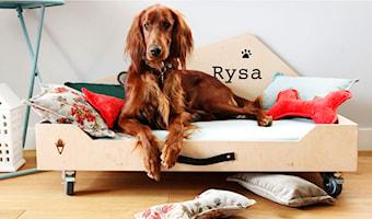 Rysia Chata - Sklep